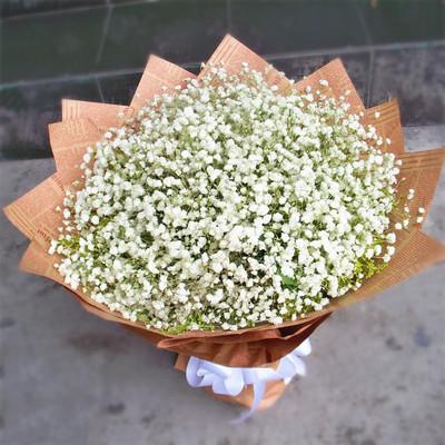 花市鲜花网_鲜花速递_纯纯的情谊